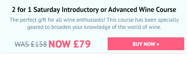 2 for 1 Saturday Introductory or Advanced Wine Course - Was £158, Now £79