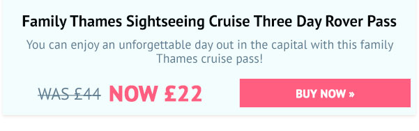Family Thames Sightseeing Cruise Three Day Rover Pass Special Offer - Was £44, Now £22